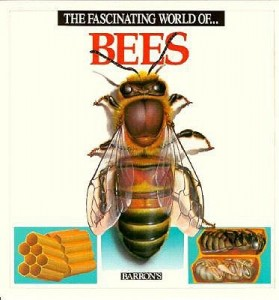 The-Fascinating-World-of-Bees-Parramon-Jose-Maria-9780812047202-279×300