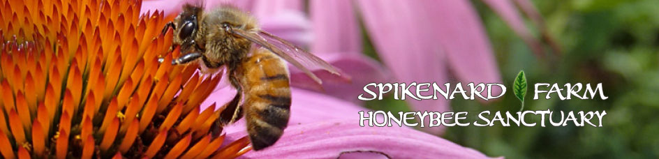 Spikenard Farm Honeybee Sanctuary