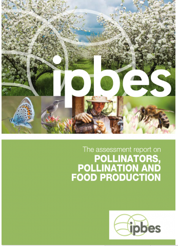 IPBES Science and Policy for People and Nature. Assessment Report on Pollinators, Pollination and Food Production